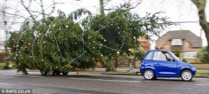 Новогодняя елка гигант