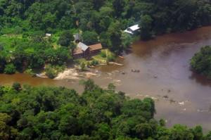 Суринам. Дождевые леса