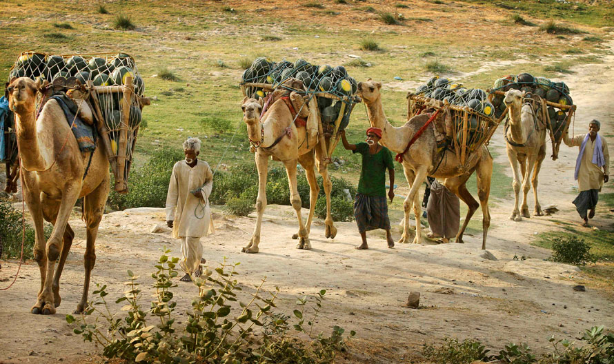 27.04.2010 Индия