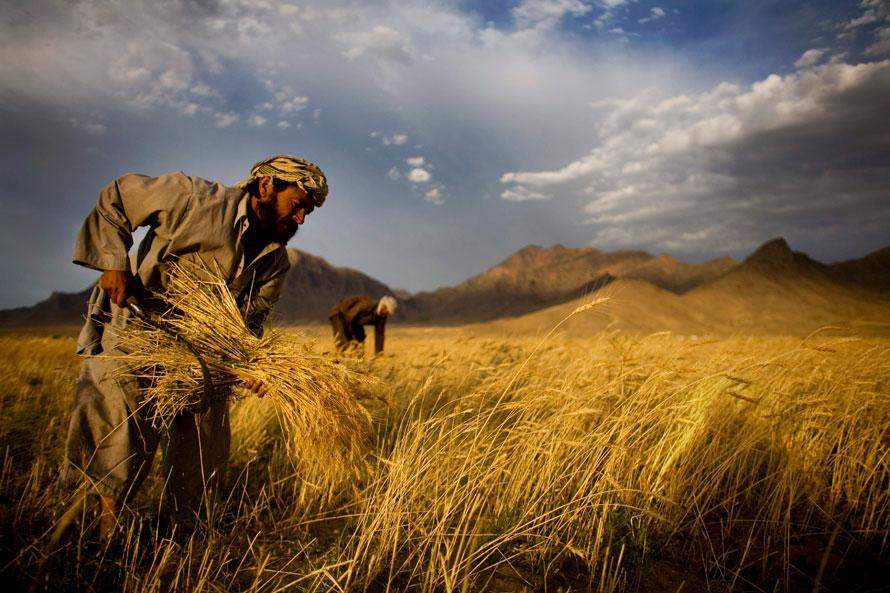 28.06.2010 Афганистан