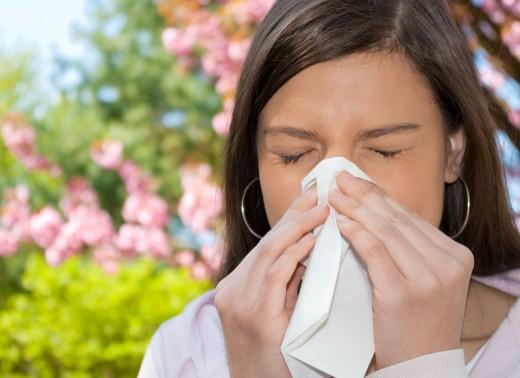 Всё, что вы не знали об аллергии на пыльцу растений