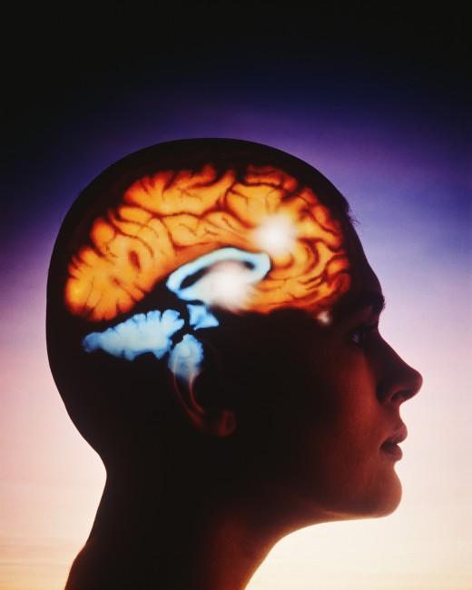 Возможности человеческого мозга достигли предела