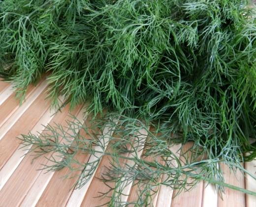 Летние травы: базилик - для настроения, а розмарин - для сердца
