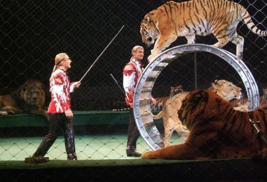 Почему люди любят театр и цирк?