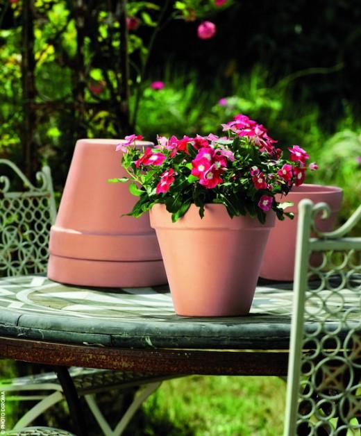 Рекомендации по выбору цветочных горшков от Green Land