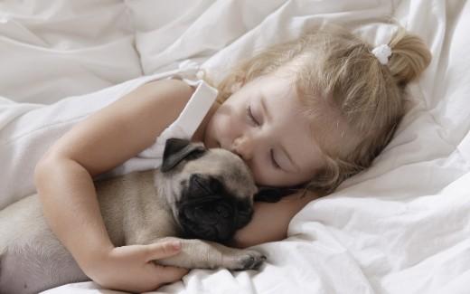 Хочу собаку! Как выбрать щенка для ребенка?