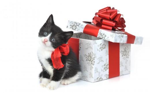 О подарках в шутку и всерьез