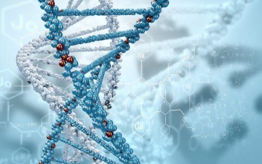 """Компания """"Микромир"""" зарегистрировала первый лекарственный препарат с бактериофагами для ветеринарного применения"""