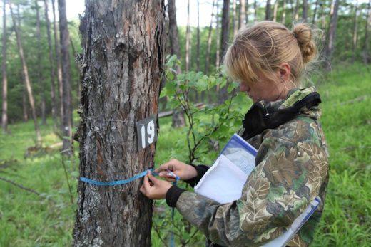 Члены оргкомитета Экодиктанта отметили, как много делают работники заповедного дела России