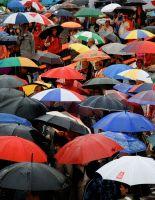 Лучшие зонты — с металлом