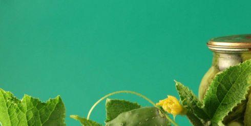 Свежие и соленые огурцы: польза и вред