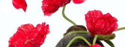 5 новогодних бьюти-обещаний для сохранения своего здоровья и красоты