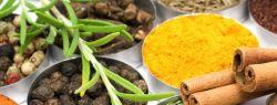 Сочетание специй и пряностей с продуктами