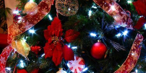 Скоро Новый год — пора подумать о ёлке