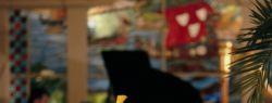 Как выбрать кафе или ресторан с живой музыкой в Воронеже?
