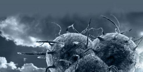 19 интересных фактов о вирусах