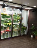 Как сохранить цветы