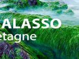 THALASSO BRETAGNE разработала серию комплексных программ для здоровья и красоты ног