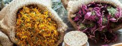 Лекарственные травы и сборы для вашего здоровья