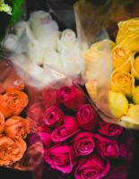 Что символизируют цвета роз?