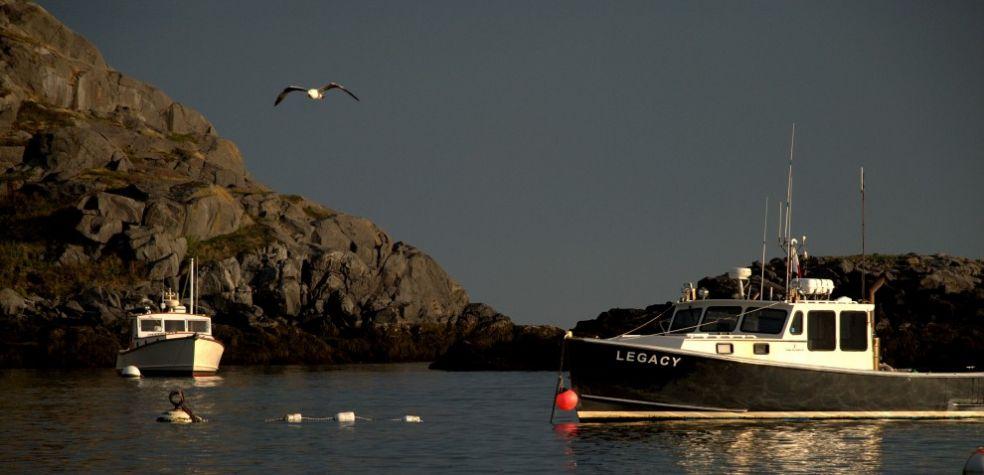 Лодки для охоты за лобстерами