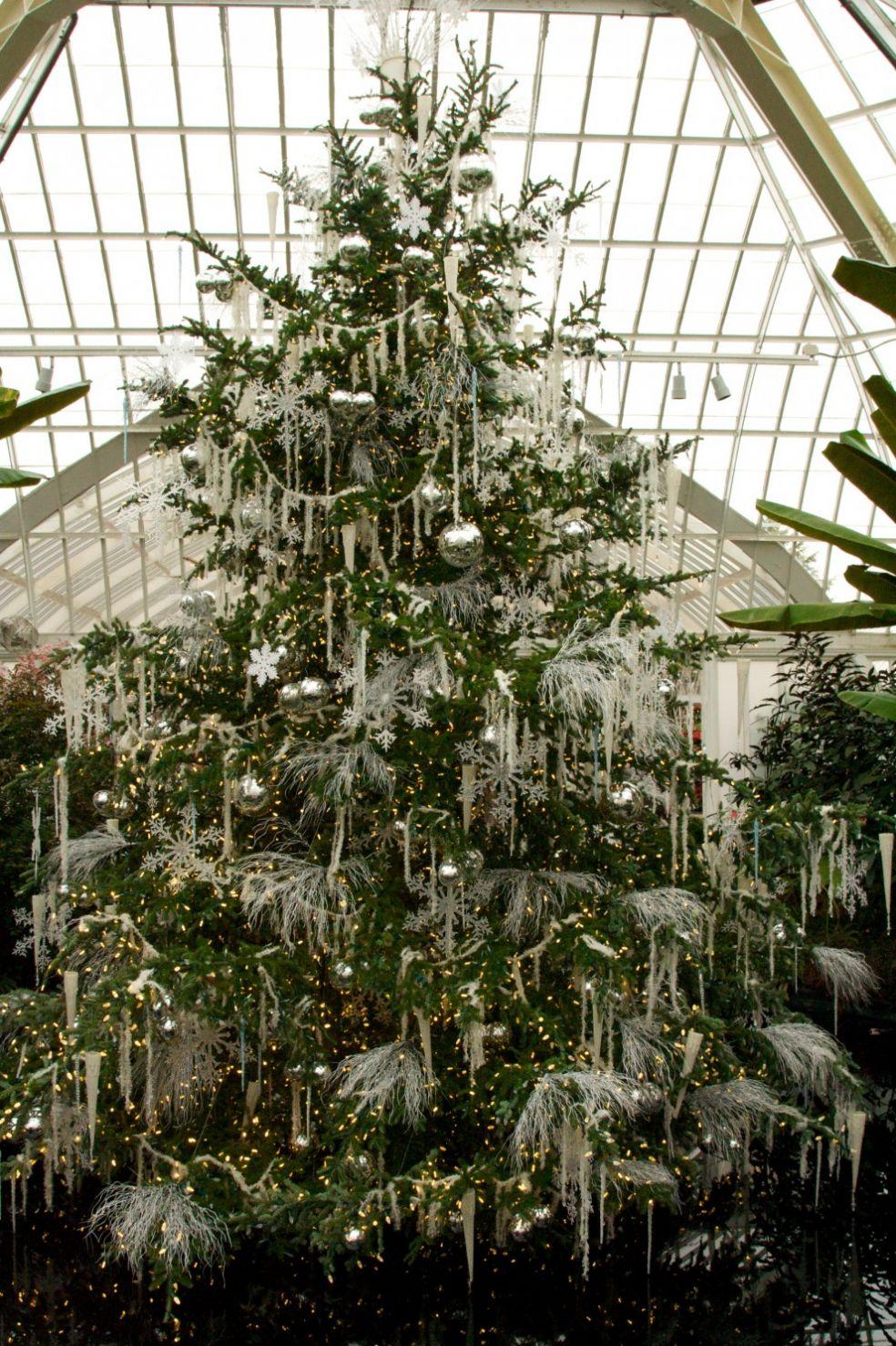 Новогодняя елка в Ноттингеме, Великобритания