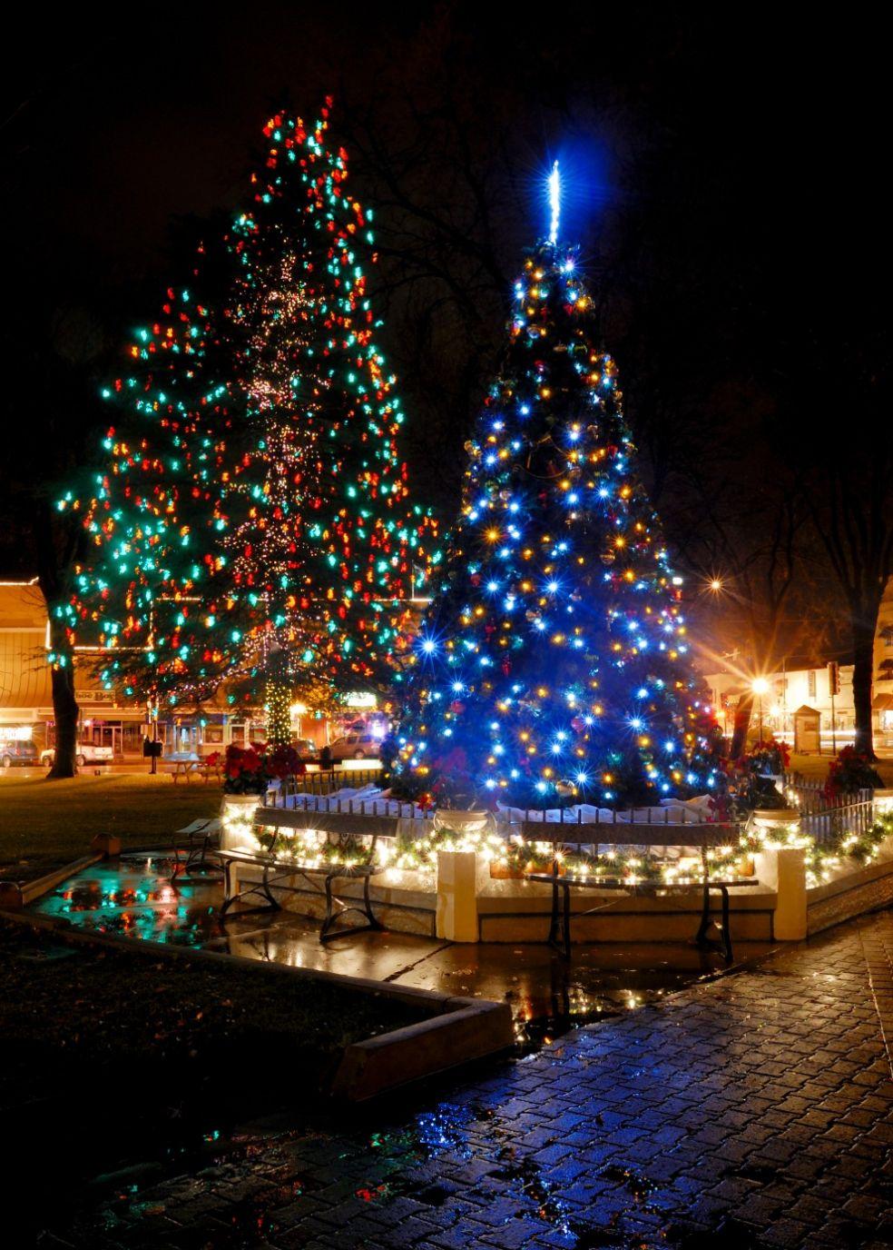 Новогодняя елка в Париже