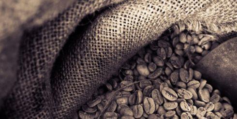 Ученые разрешили пить кофе