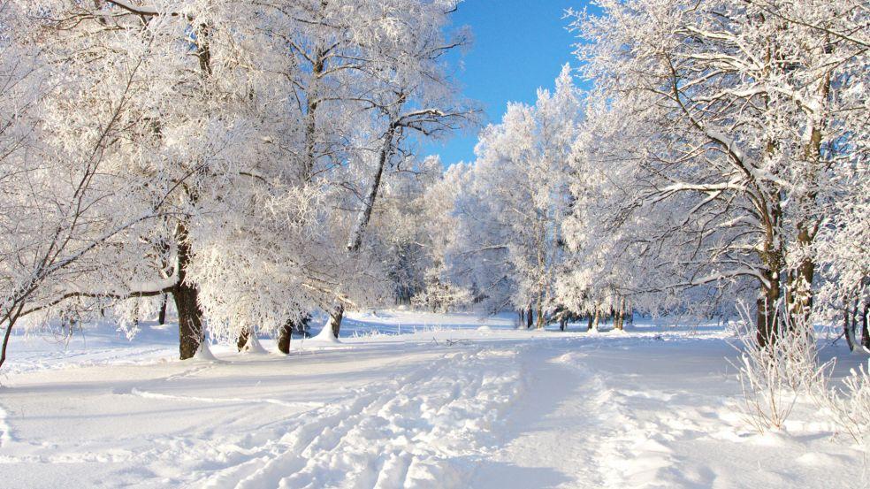 Картинки по запросу зима