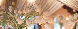 Оформление праздников цветами поручите флористам