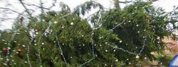 Трехэтажная новогодняя елка (фото)