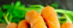 10 секретов морковки, которые полезно знать