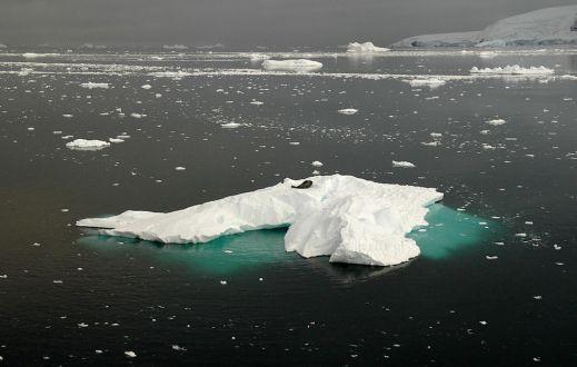 Ледяная красота